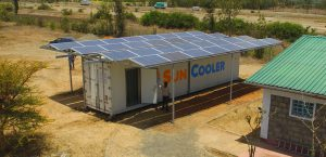solar cold storage off grid